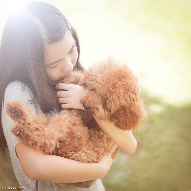 Singapore outdoor pet photographer