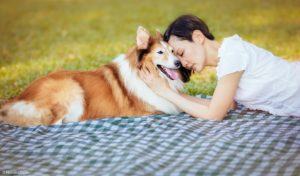 Pet photography in Singapore